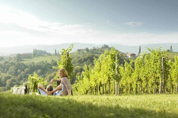 Landschaft eines Weingartens mit zwei Personen im Vordergrund die bei einem Picknick einen Wein trinken