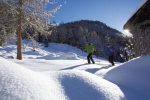 Tanken Sie Ruhe und Kraft bei einer Schneeschuhwanderung in der verschneiten Landschaft Österreichs.