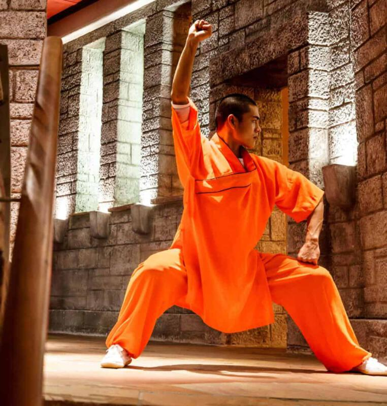 Meister in Shaolin-Qi Gong, Tai Chi und Kung Fu